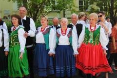 Festiwal-Węgry-Gyomaendrőd-11