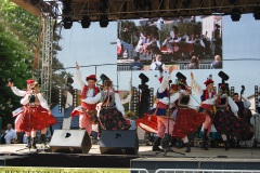 Festiwal-Węgry-Gyomaendrőd-25