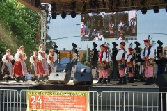 Festiwal-Węgry-Gyomaendrőd-27