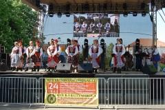 Festiwal-Węgry-Gyomaendrőd-28