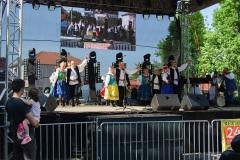 Festiwal-Węgry-Gyomaendrőd-29
