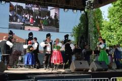 Festiwal-Węgry-Gyomaendrőd-30