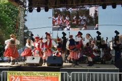 Festiwal-Węgry-Gyomaendrőd-26