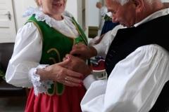 Festiwal-Węgry-Gyomaendrőd-9