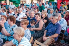 Międzyn.-Festiwal-Folkloru-Pilzno-218