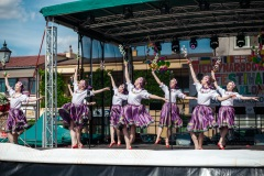Międzyn.-Festiwal-Folkloru-Pilzno-94