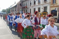 Rocznica-Sokolstwa-Kraków-2012-27