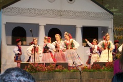 Węgry-Bekescaba-2010-4